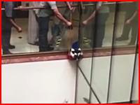 悲しい事故動画。手すりの外側にいたニャンコを助けてあげようとした結果・・・。