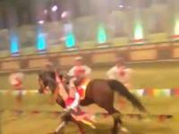 サーカスで死亡事故。馬の曲乗りを披露していた女性が全身を強く打って死亡。