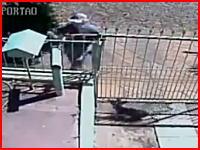 郵便配達人に殺されてしまったワンちゃん。極悪な犯行の様子が監視カメラに記録される。