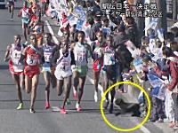 これは酷い。ニューイヤー駅伝で観客が沿道から犬を発射して選手を転倒させる。