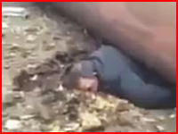倒れてきた煙突の直撃を食らって潰されてしまった男性の映像(°_°)解体中の事故か。
