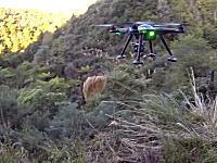 タラルア山脈の景色を空撮中に何者かに狙われ撃墜されてしまったドローンの映像。