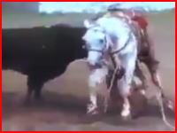 これはキツイ。牛に腹を裂かれた馬が内臓を飛び散らせながら逃げ惑う映像がヤバい。