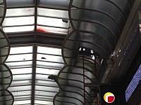 心斎橋商店街で女子高生が飛び降り自殺。その現場の写真が投稿される(((゚Д゚)))