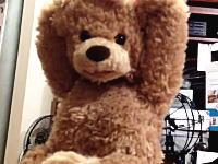 この万歳テディベア怖すぎワロタwwwお子様100%で泣き出すだろwwwトラウマる熊。
