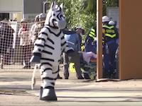 上野動物園の「猛獣脱出対策訓練2016」の様子がAP通信で紹介され海外で笑いものにwww