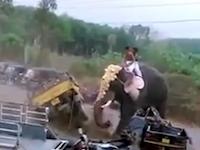 ゾウさん強すぎ(°_°)インドでご機嫌斜めなゾウさんが大暴れして破壊しまくる。