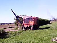プロペラのようにブレードを高速回転させて木を切り倒すマッシーン。