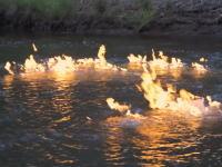 燃え続ける川。オーストラリアで火を付けると燃え続ける不思議な川が発見される。