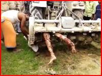 これはヤヴァイ。農業機械に巻き込まれてしまっている人の映像がきつい(°_°)