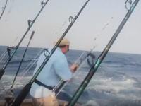 めちゃくちゃ危ない(°_°)カジキ釣りでカジキに刺されるところだったアングラー。