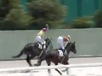 競馬動画。ギリギリで負けちゃった馬の頭をぶん殴る騎手の映像が話題に。