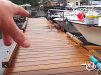 このマリーナどんだけ深いんだよ!ケチカンのマリーナに現れた大きなクジラにビックリ動画。