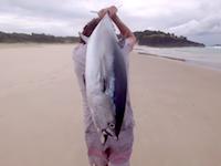 キャリングでショアマグロ!ドローンを使ったサーフからのマグロ釣りメソッドが爆誕か。
