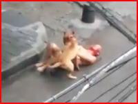 犬が殺る気になったら飼い主なんてこんなもん(@_@;)人間は武器を手にしても犬にはかなわない。
