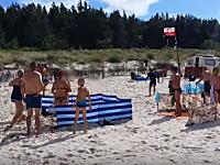 どうすりゃいいのYouTube。海水浴場にイノシシが紛れ込んだらこうなる動画。