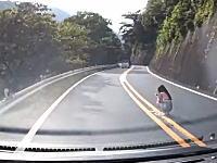 えっ!?峠道のカーブのど真ん中でしゃがみスマホをする黒髪の女の子が。天城峠。