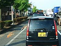 京阪国道で撮影されたマナーの悪すぎる車。道路に生ごみブシャー捨てする軽自動車(@_@;)