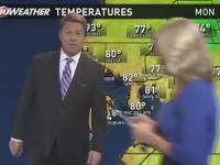 全米がネタ化。フロリダでは朝の天気予報にポケモンGO中のニュースキャスターが映りこむ。