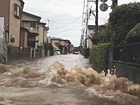 台風9号の影響で冠水した埼玉の道を行くレガシーの車載。走れるもんなんだね。