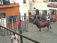 人が檻の中に入って外の牛を挑発するタイプの牛追い祭りで最悪の展開にwwww