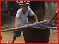 熱湯の入った大釜にワンちゃんを生きたまま投入。中国流犬の下茹で方法。