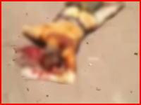 シリアで撃墜されたロシアヘリコプターのパイロットが辱められる。ロシアは毒ガスで報復か。
