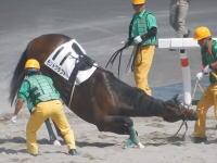 札幌競馬動画。1番人気のモンドクラフトが落馬して安楽死。騎手は全治未定の重傷。