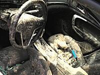 これは悲惨すぎるwwww最悪のタイミングで窓を開けていた車が(°_°)もうダメか。