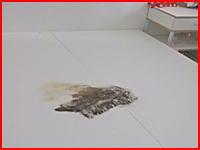 中国で家具付き賃貸アパートのベッドの下から恐ろしい物が発見される(((゚Д゚)))