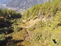 ウイングスーツの低空飛行で木に衝突してしまった男のビデオ。ムササビジャンプ。