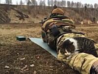 銃「ドシュ!」猫「ピクピクッ!」射撃訓練とネコちゃん。どんだけ慣れてるのwww