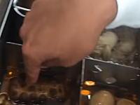 愛知のスケボー店の社長がサークルKのおでんを指で触ってふざける動画が炎上中