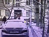 なんという不運。犬の散歩をしていた21歳の女性が倒れてきた木の直撃を食らって亡くなる。