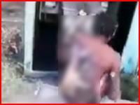 銅線を盗もうとして焼け焦げている盗人の映像がネットにアップされる(((゚Д゚)))