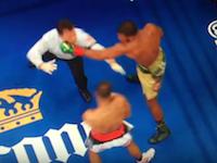 ボクシングで痛い動画。レフェリーがスーパーミドル級パンチをくらってしまう。