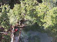 大自然の高飛び込み。約18メートルの木に登って川に飛び込むジャンパー視点のビデオ。