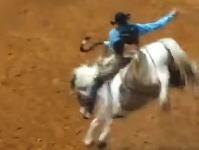 ロデオで馬が頭をぶつけて死亡するという珍しい事故の映像。