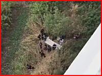 カーブを曲がりきれなかったライダーが陸橋から落下。その瞬間の車載ビデオが公開。