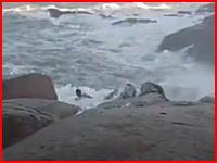 荒れた海で亡くなったサーファーたちのビデオ。これは無理だな助けられない。