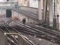 池袋駅で痴漢容疑をかけられた男が線路を走って逃走(動画)どこまで行くの。