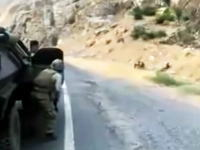反応遅くない?スナイパーに狙われなんとか脱出しようとしている兵士たちのビデオ。