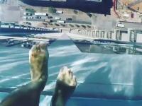 ヒューストンの高級マンションに設置された「空中プール」がすごこわい。