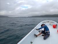 31.5キログラム。石垣島でモンスターな魚が釣れてしまった。オレオレ動画。