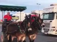 馬車の駐車方法。これってけん引免許があれば馬車の運転(操縦?)も上手くなるのか。