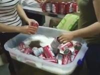 中国の偽ビール工場を激撮したビデオがとんでもない。これ飲めるのかよ?