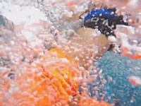 恐怖体験。スピアフィッシング中にサメに襲われてしまった男性の映像。