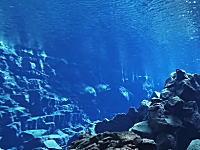 嘘みたいな透明感。アイスランドの氷河湖に潜るビデオがすてき。