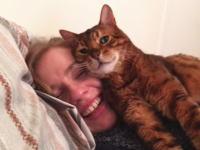 いつも自宅の門の前で出迎えてくれるネコ。これは幸せやね(*゚∀゚)=3