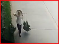 苗を運んでいたおばあさんが超速のワンボックスにはね飛ばされる衝撃の事故映像。